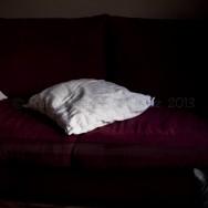 Gato gris, sofá rojo y cojines blancos