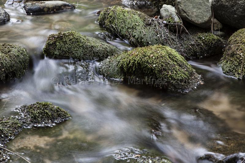 Entre las rocas, sobre las rocas, bajo las rocas